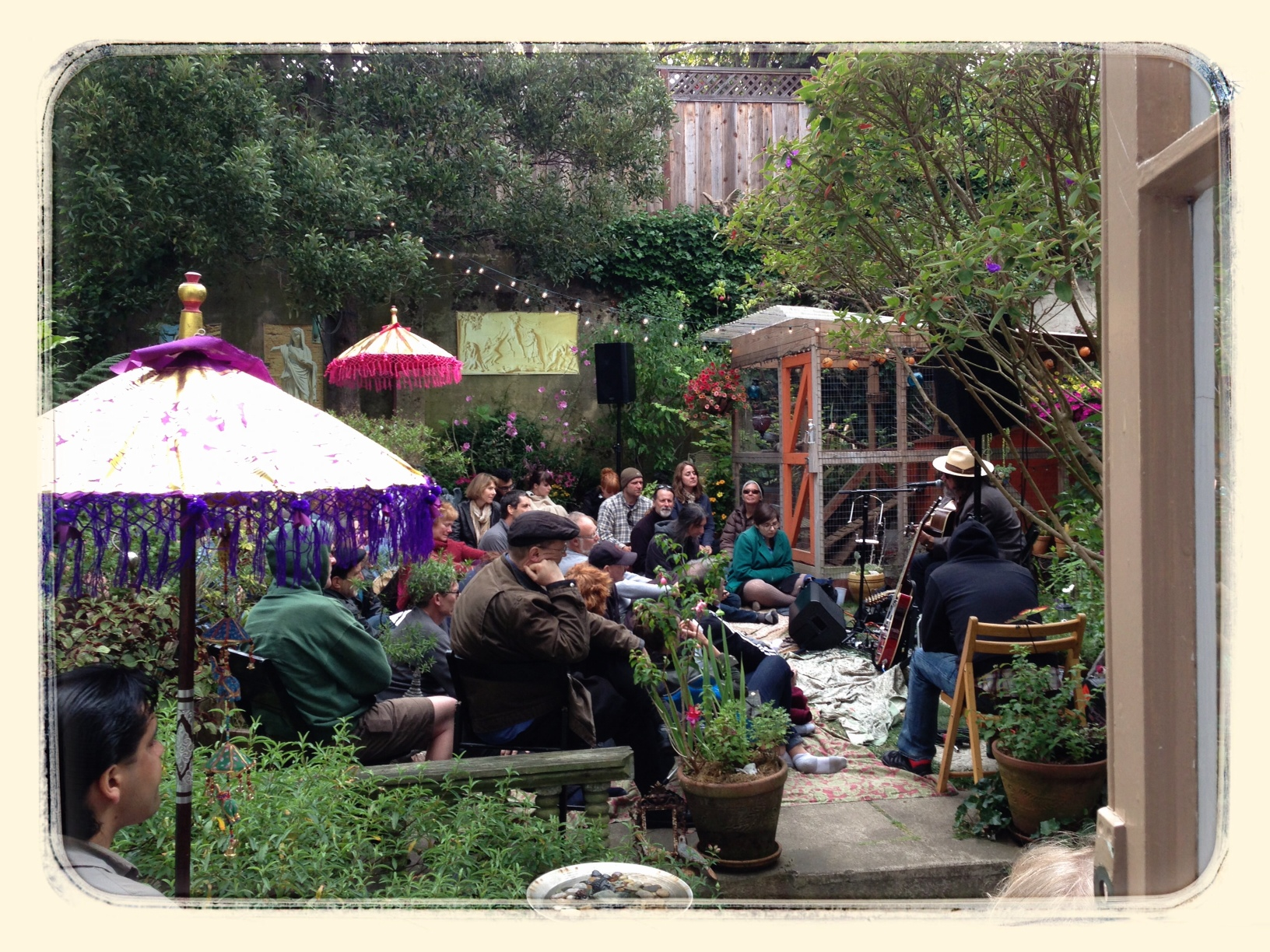 backyard concert with peter case